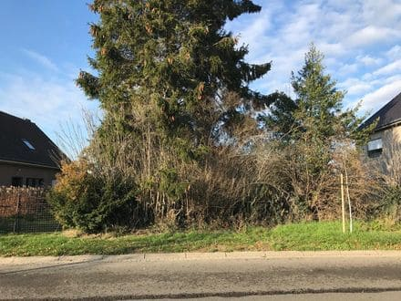 Building land<span>1000</span>m² for rent